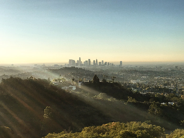 View of Downtown LA from Griffith Park in Autumn