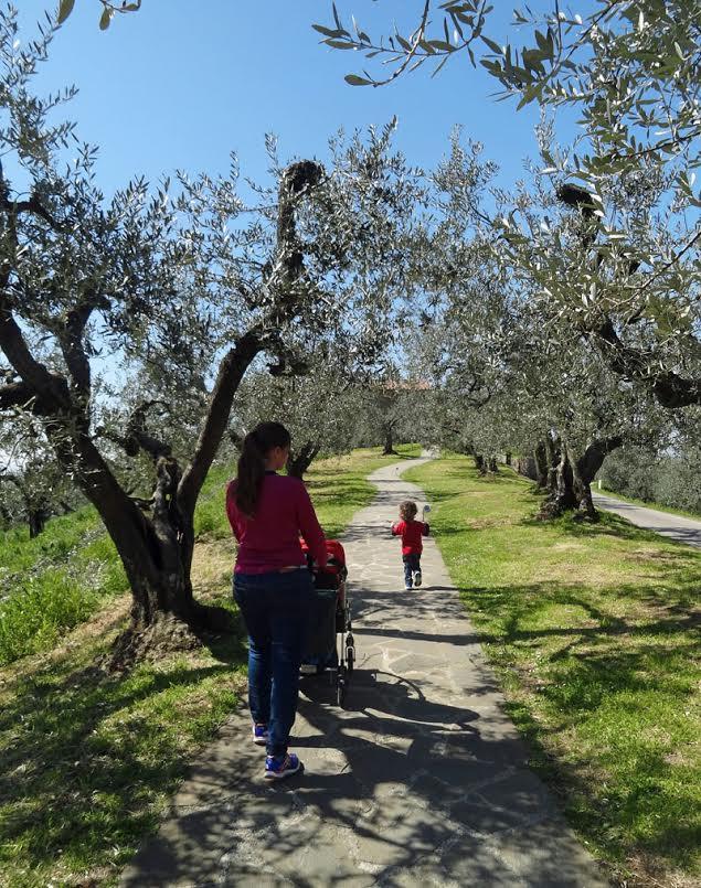 Camino de entrada a la casa natal de Leonardo en Anchiano