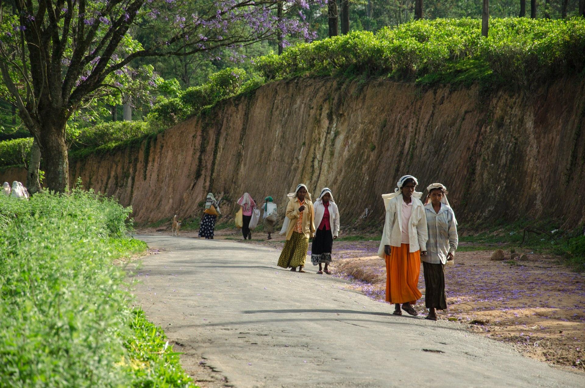Strade in Sri Lanka - foto @GabrieleSaluci