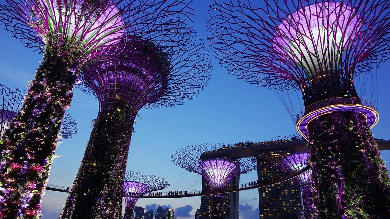 Gardens by the bay Singapore, , tra i luoghi più colorati del mondo