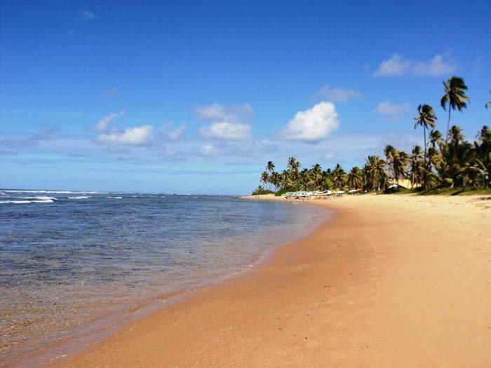 playa do forte en brasil