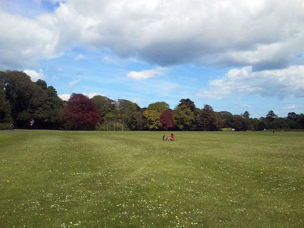 Qué hacer en Dublin: Phoenix Park