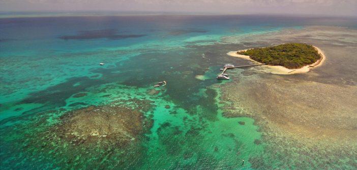 Qué ver en Australia: Gran barrera de coral