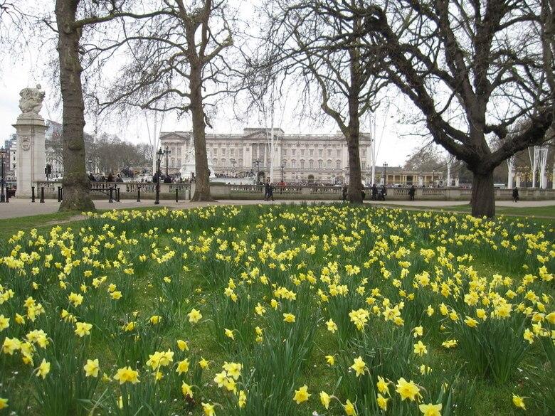 ver el cambio de guardia en buckingham palace es gratis londres