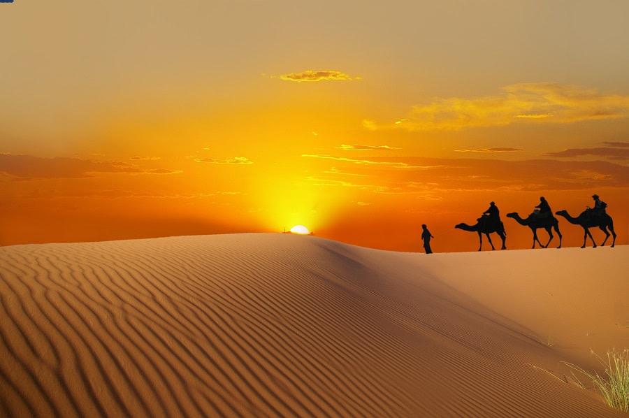La magia del deserto
