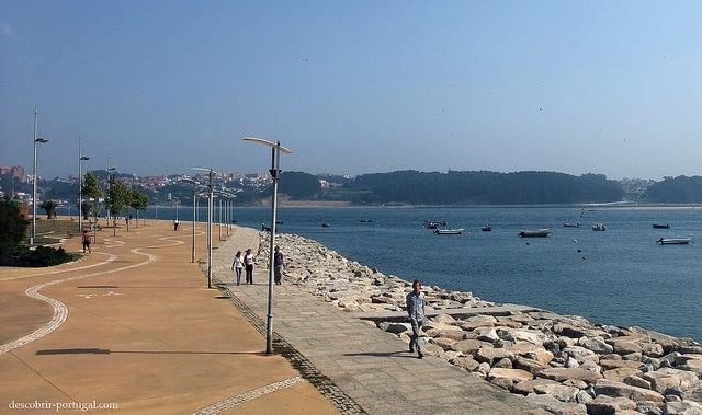 Qué ver en Oporto: passeio alegre en oporto