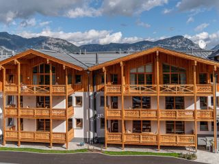 Haus im Ennstal im Skylodge Alpine Homes
