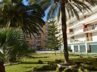 Urlaub La Pineda im Apartaments Cye 5 Rentalmar - Bri