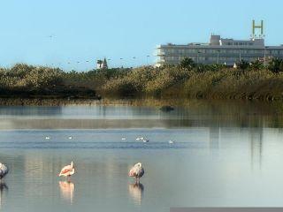 Urlaub San Pedro del Pinatar im Lodomar Spa & Talasoterapia Hotel & Apartments