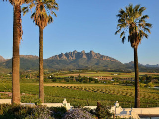 Wellington im Val Du Charron Wine & Leisure Estate