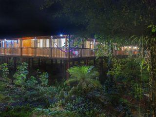 Urlaub Chilamate im Selva Verde Lodge & Rainforest Reserve