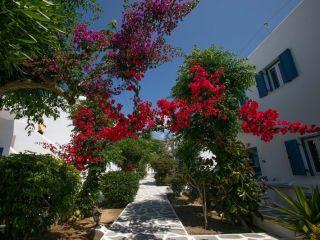 Urlaub Platys Gialos im Acrogiali Hotel