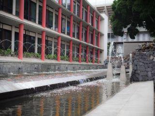 Urlaub Santa Cruz de Tenerife im Escuela Santa Cruz