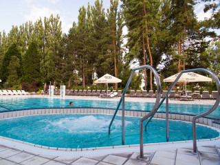 Pieštany im Health Spa Resort Esplanade - Palace Wing
