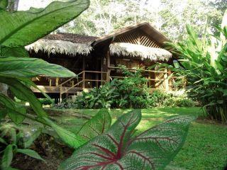 Urlaub Puerto Viejo de Talamanca im Cariblue Beach & Jungle Resort