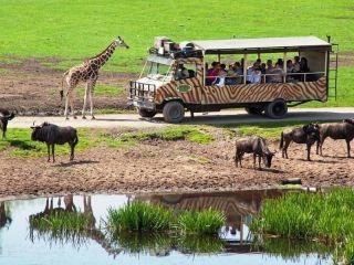Hodenhagen im Park - Serengeti Park