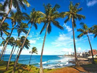 Urlaub Salvador im Mar Brasil Hotel