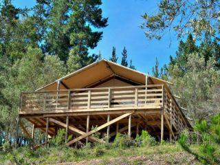 Plettenberg Bay im Ingwe Forest Cabins & Adventures