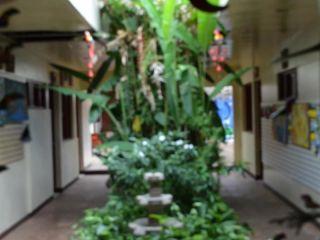 Managua im Art Hotel Managua Nicaragua