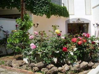 Urlaub Palinuro im Baia Hotel