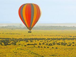 Urlaub Masai Mara im Governors Camp
