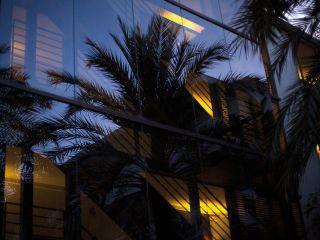 Playa de Muro im Hotel Las Gaviotas Suites Hotel