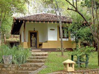 Urlaub Kandalama im Amaya Lake Hotelresort