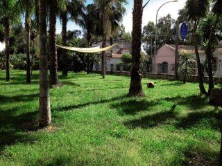 Urlaub Mascali im Park Hotel Oasi
