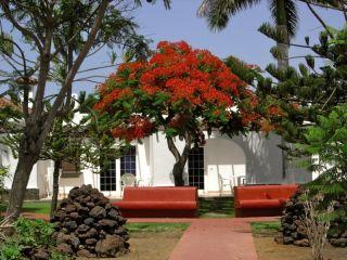 Urlaub Campo Internacional im Dunagolf Suites