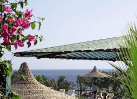 Hotel Jewels Sahara Boutique Resort in Rotes Meer - Bild von 5vorFlug