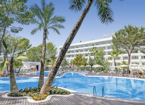 Allsun Hotel Bella Paguera in Mallorca - Bild von alltours