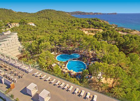 Allsun Hotel Bella Paguera günstig bei weg.de buchen - Bild von alltours