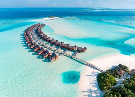 Hotel Anantara Dhigu Maldives Resort günstig bei weg.de buchen - Bild von FTI Touristik
