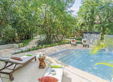 Hotel Las Palapas in Riviera Maya & Insel Cozumel - Bild von Travelix