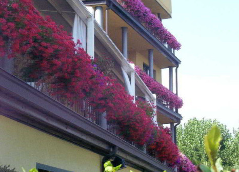 Hotel Riva del Sole in Oberitalienische Seen & Gardasee - Bild von TROPO