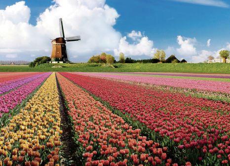 Parkhotel Den Haag in Südholland - Bild von ITS