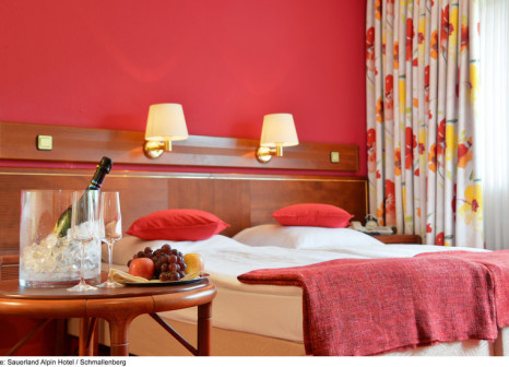 Hotelzimmer mit Fitness im SAUERLAND Alpin Hotel