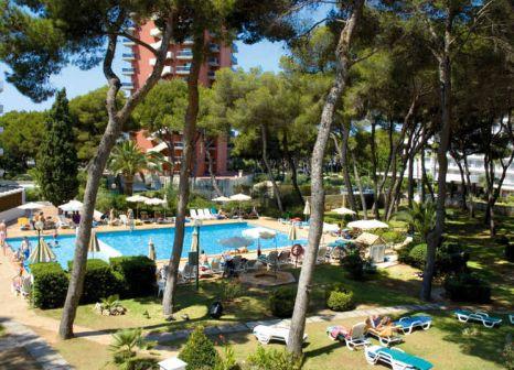 Hotel Riu Playa Park 1056 Bewertungen - Bild von LMX Live