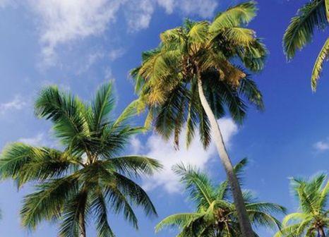 Hotel Thulhagiri Island Resort & Spa 89 Bewertungen - Bild von FTI Touristik