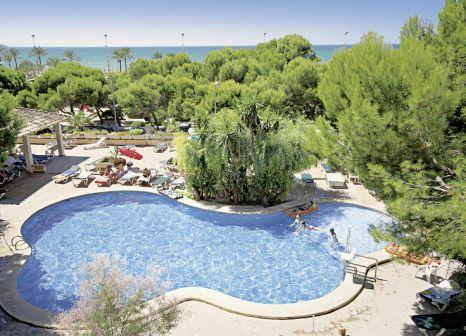 Hotel Houm Plaza Son Rigo 260 Bewertungen - Bild von DERTOUR
