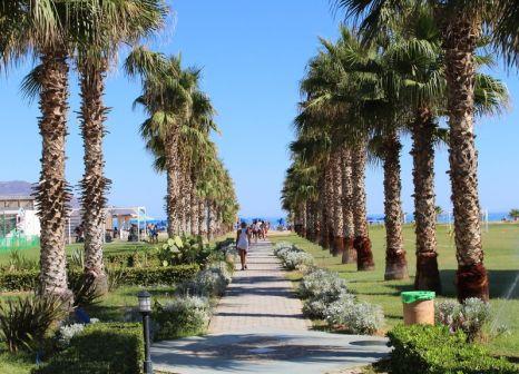 Hotel Delfina Beach 43 Bewertungen - Bild von TUI Deutschland