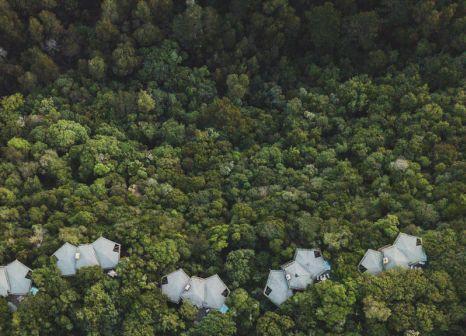 Hotel Tsala Treetop Lodge in Südküste - Bild von TUI Deutschland
