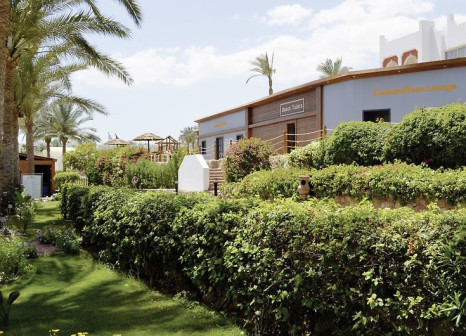 Hotel SUNRISE Diamond Beach Resort in Sinai - Bild von FTI Touristik