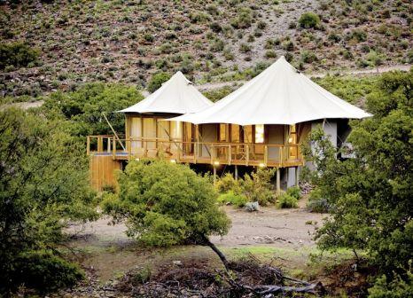 Hotel Sanbona Wildlife Reserve günstig bei weg.de buchen - Bild von DERTOUR
