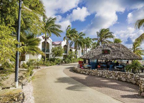 Hotel Plaza Resort Bonaire günstig bei weg.de buchen - Bild von DERTOUR