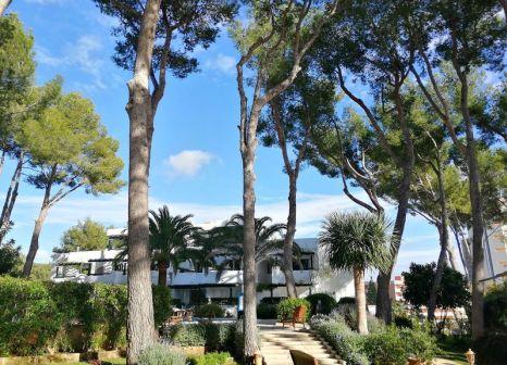Los Tilos Aparthotel in Mallorca - Bild von TUI Deutschland
