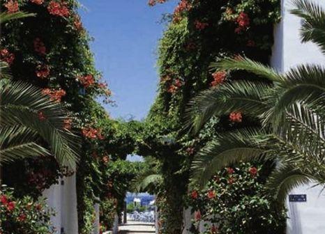 Galeana Beach Hotel in Kreta - Bild von 5vorFlug