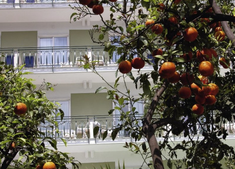 The Carlton International Hotel günstig bei weg.de buchen - Bild von 5vorFlug