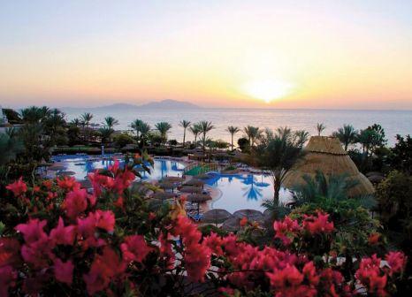 Hotel Royal Grand Sharm 50 Bewertungen - Bild von 5vorFlug