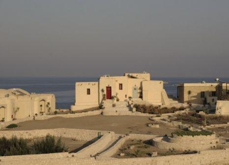 Hotel The Oasis in Marsa Alam - Bild von 5vorFlug